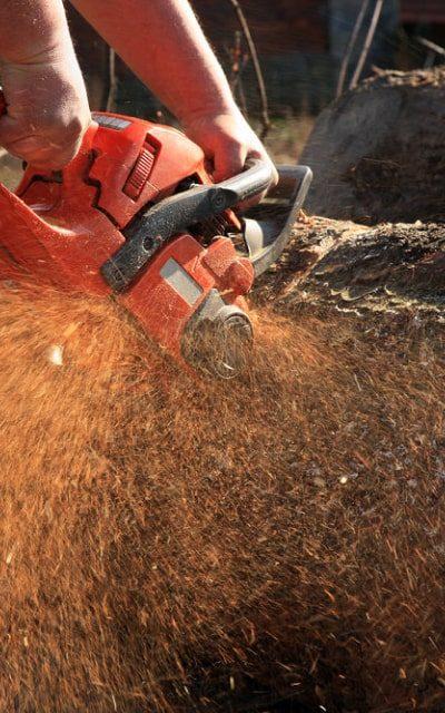 wood-tools-img-saw-1-opt